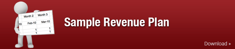 Sample Revenue Plan